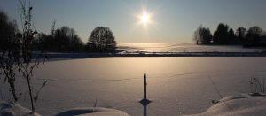 RENNTIER.DE - Schneelandschaft